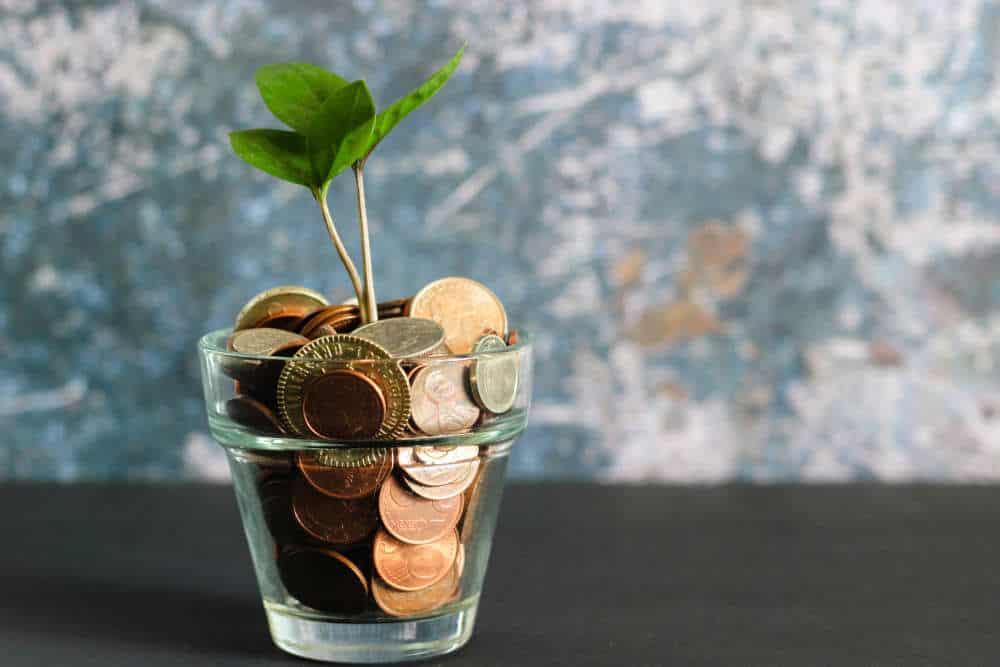 Gratis vs betalende website