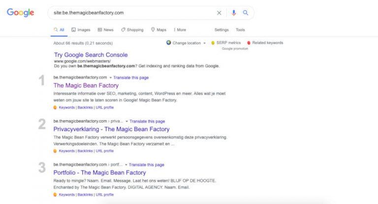 Indexering zoekmachines - SEO analyse en opvolging